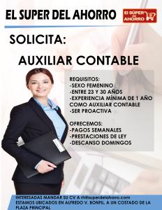 auxiliar-contable-04