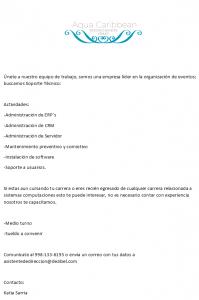 asistente-sistemas