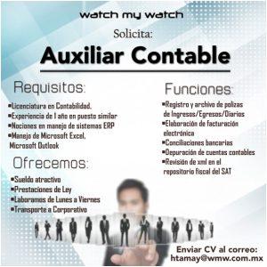 auxiliarcontable_wmw