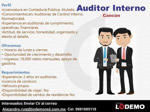 auditor-interno