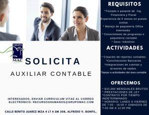 auxiliar-contable