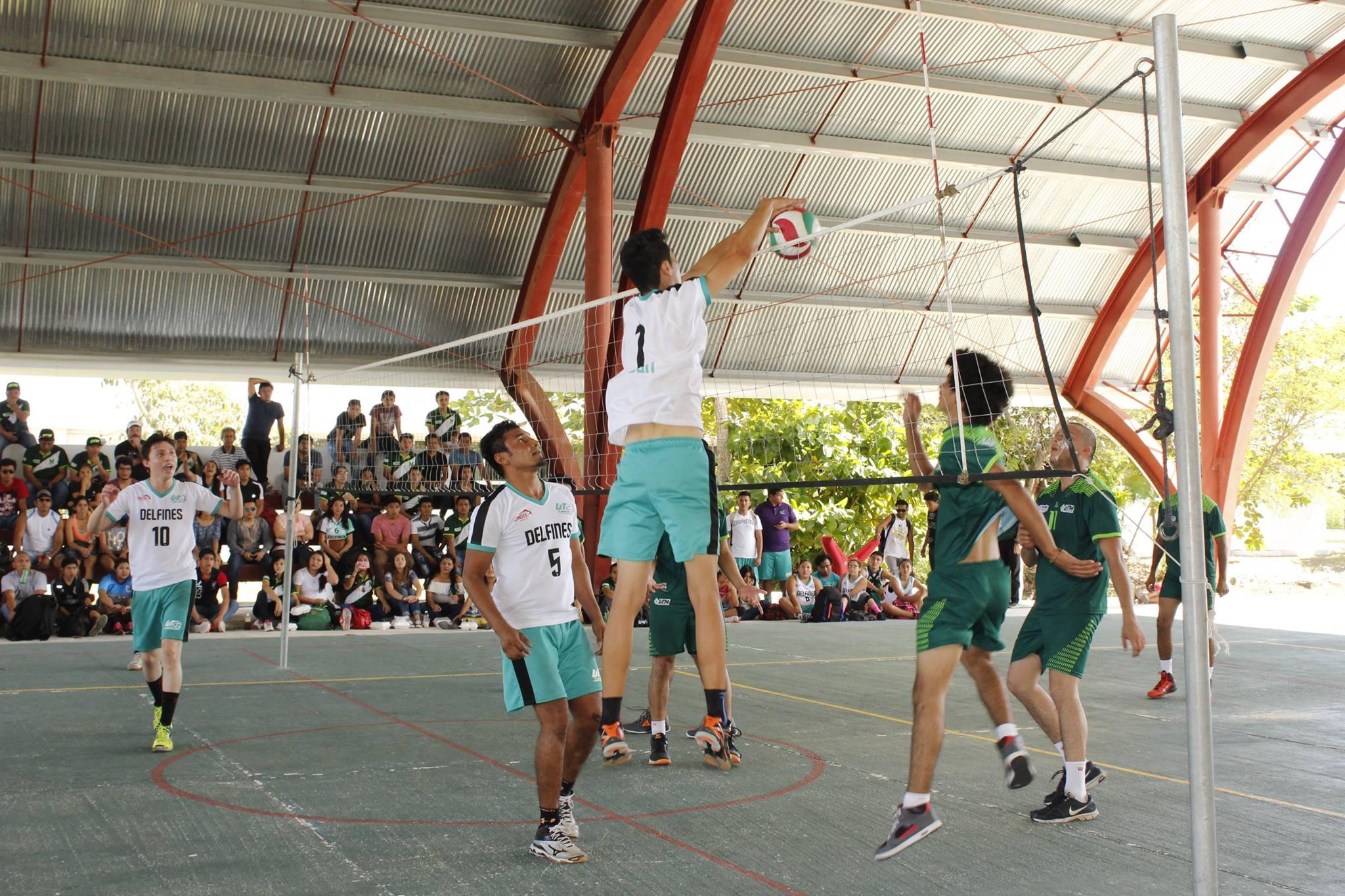 erdcut-voleibol